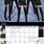 calendar-ls-2009-jun-cybertronic-ragdoll