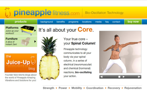 corporate website design - health and beauty  website design - Pineapple Fitness